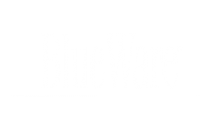 BlueWare-logo-Wht-L